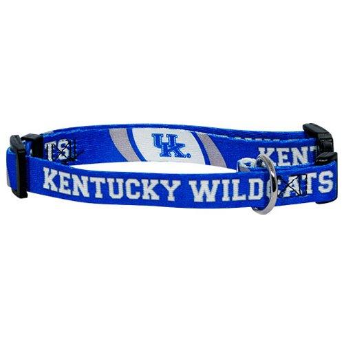 hunter-mfg-kentucky-wildcats-dog-collar-medium