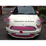 Pink Eyelashes for cars