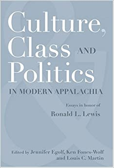 responses to modernity essays in the politics of culture