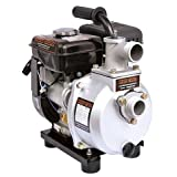 Franklin little giant electric 617050 2RLAG-1, 60 GPM Gas Water Pump (Color: Gray, Tamaño: 16