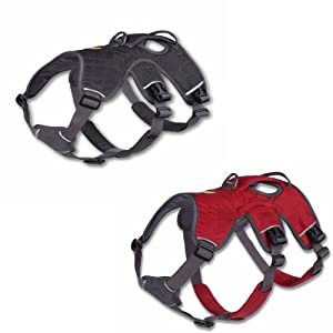 Ruffwear Webmaster Dog Harness 2012 Design from Ruffwear