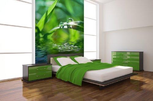 fototapete sunlight drops in verschiedenen gr en als papiertapete oder vliestapete w hlbar. Black Bedroom Furniture Sets. Home Design Ideas
