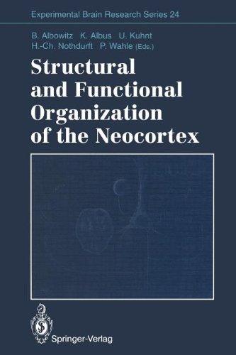 Structural and Functional Organization of the Neocortex: Proceedings of a Symposium in the Memory of Otto D. Creutzfeldt, May 1993