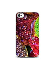 Apple Iphone 4s ht003 (76) Mobile Case from Leader