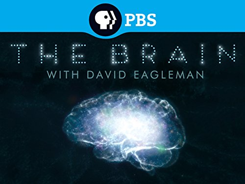 The Brain with David Eagleman Season 1