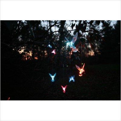 Mr. Light 44251 Solar Hummingbird
