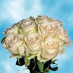 Order Ivory Roses | Vendela Roses Long 75