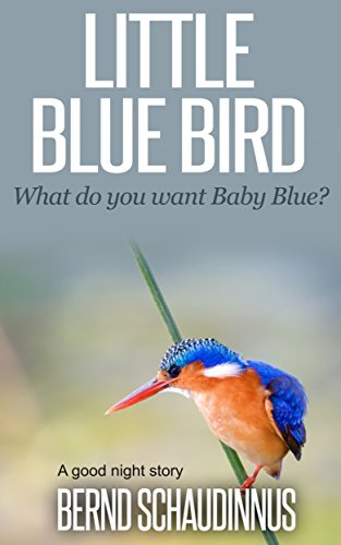 Little Blue Bird: What do you want Baby Blue?