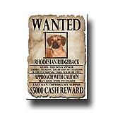 Rhodesian Ridgeback Wanted Fridge Magnet