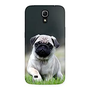 Gorgeous Pug Dog Grass Multicolor Back Case Cover for Galaxy Mega 6.3