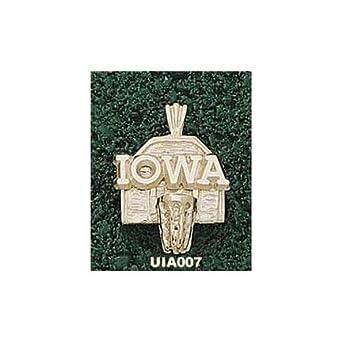 Iowa Hawkeyes Iowa Basketball Backboard Pendant - 14KT Gold Jewelry by Logo Art