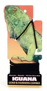 Nylon Iguana Harness & Lead Black