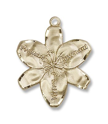 Gold Filled Chastity Pendant with 18