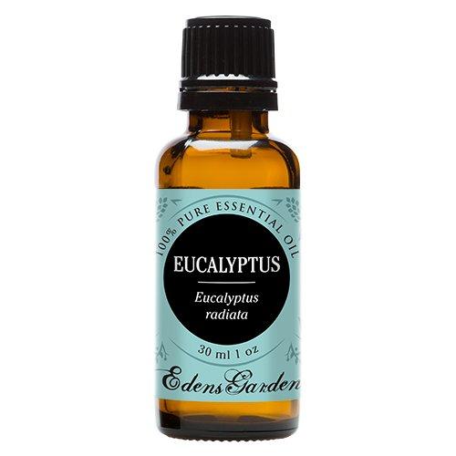 Eucalyptus Radiata 100% Pure Therapeutic Grade Essential Oil by Edens Garden- 30 ml