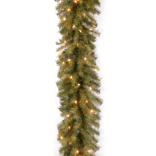 """National Tree Nf-9Alo-1 9' X 10"""" Norwood Fir Garland With 50 Clear Lights"""