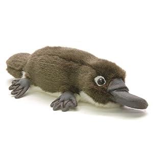 Amazon.com: Anima - Peluche Ornithorynque - 28 cm 28xcm