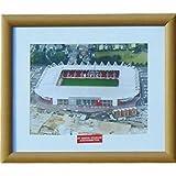 Southampton Stadium Print