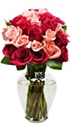 24 Long Stem Blushing Beauty Rose Bou…