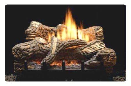 18 Propane Lp Manual Gas Log Fireplace Insert Guide Sale Key