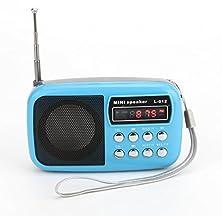 buy Dewant® Mini Digital Portable Mp3 Music Player With Micro Sd/Tf Usb Disk Radio Speaker. (L012 Blue)