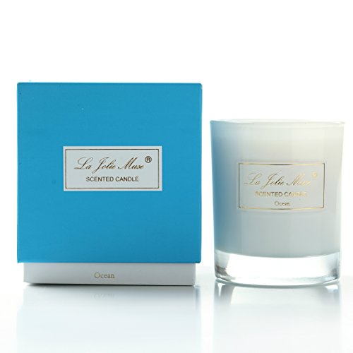 Scented Candles -Pure Soy Wax Ocean Mist Essential Oil, Fine Home Fragrance& Decorations, 230g