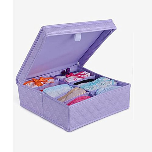 pu-con-coperto-intima-box-di-stoccaggio-dimensioni-30-centimetri-