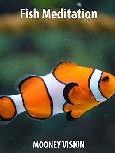 Fish Meditation