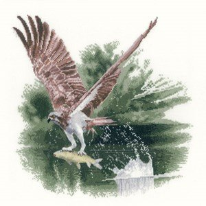 osprey-in-flight-14-count-aida-cross-stitch-kit