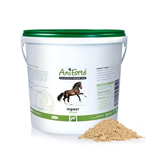 AniForte-Ingwer-gemahlen-1-kg-Naturprodukt-fr-Pferde