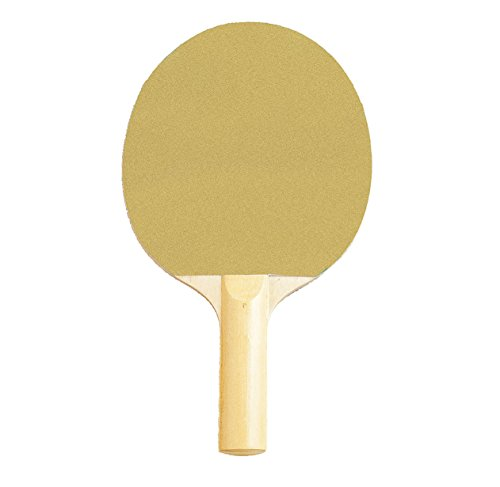 Champion Sports PN2 Table Tennis Paddle (4 Star Ping Pong Balls Champion compare prices)