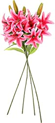 UberLyfe Real Touch and Look 4 Artificial Flower Tiger Lily Passionate Pink_4Bunch-FL-000632-LY-DPK4B4F