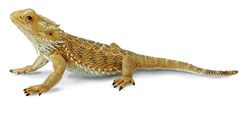 CollectA Bearded Dragon Lizard Figure
