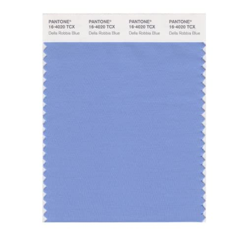 PANTONE SMART 16-4020X Color Swatch Card, Della Robbia Blue - House