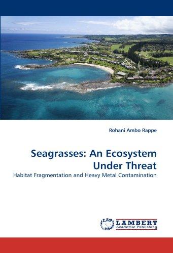 seagrasses-an-ecosystem-under-threat-habitat-fragmentation-and-heavy-metal-contamination