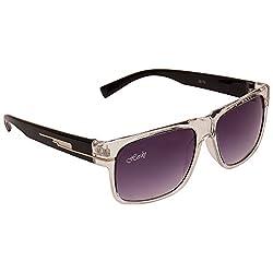 HERDY Violet Colored Wayfarer