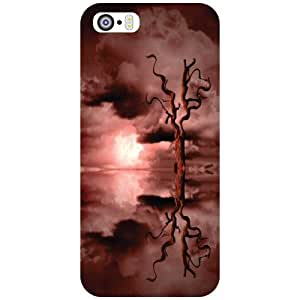 Apple iPhone 5S Back Cover - Superb Designer Cases