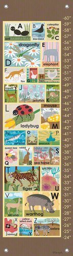 Oopsy daisy Modern Alphabet on Chocolate Growth Chart by Lisa DeJohn, 12 by 42 Inches