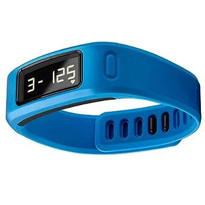 Garmin Vivofit Fitness Band - Blue