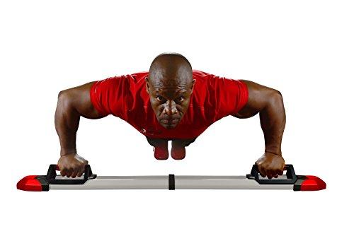perfect pushup workout chart pdf