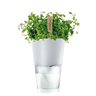 Eva Solo Herb Pot