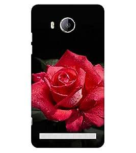 ifasho Designer Phone Back Case Cover Vivo Xshot :: Vivo X Shot ( Premium Beer )