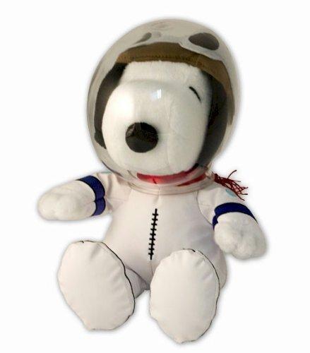 Peanuts NASA