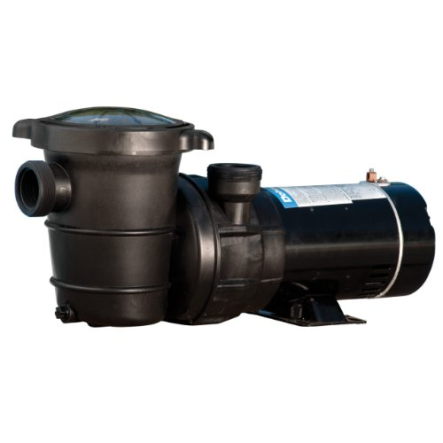 Video review doheny 39 s replacement swimming pool pump for for Best above ground pool pump