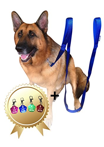 2-Handles-Dog-Leash-8FT-2Inch-Dual-Handle-Dog-Leash-FREE-Bonus-Dog-Tag-Dog-Leashes-For-Large-Dogs-Heavy-Duty-Leash-For-Dogs-Who-Pull-Dog-Leash-Large-Heavy-Duty