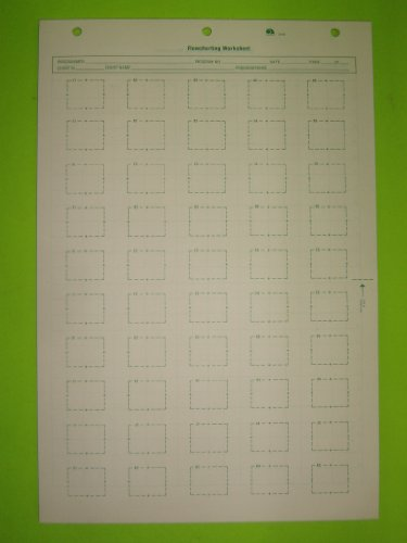 Ampad, 23-403, Flowchart Worksheet, 16 1/4″ x 11″, 5 Boxes Across, 10 Boxes Down