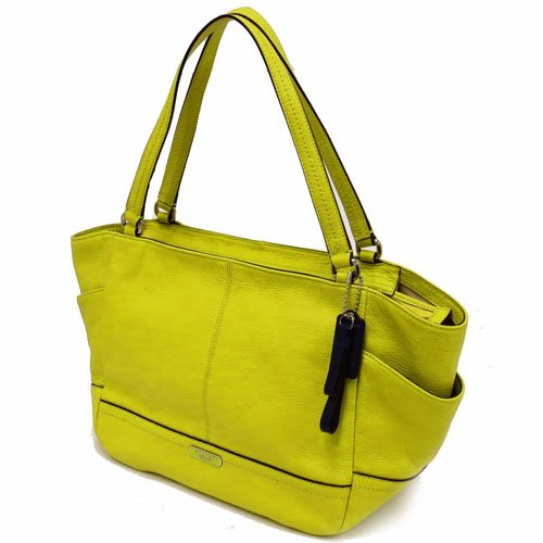 Coach   Coach Carrie Women's Tote Leather Handbag Green