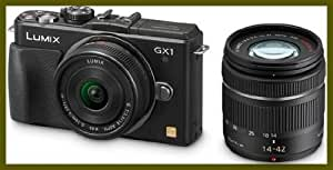 Panasonic DMC GX1W