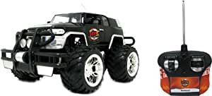 My Web RC Toyota FJ Cruiser 1:16 Car (Styles May Vary)