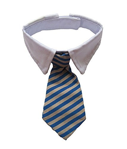 Vedem New Small Dog Cat Pet Stripe Bow Tie Neck Tie White Collar Choose Color (Blue/Khaki) (Neck Ties For Cats compare prices)