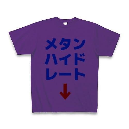 メタンハイドレート Tシャツ(パープル) M